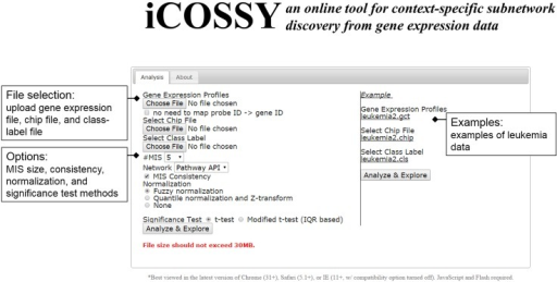 "Web interface.The most common scenario involves a user uploading a gene-expression file, a class-label file, and if necessary a chip file, and then clicking the ""Analyze & Explore"" button to get the results. The website provides the user a link that shows the results once the analysis is completed."