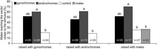 One-way olfactometer response of I. elegans males raised in different social context.Number of males (% of total tested insects) reaching the sector closer to the stimulus. Males were tested towards: 1) gynochromes, 2) androchromes, 3) males (only for males raised with males), and 4) control. n = sample size. Data with different letters are significantly different at p < 0.05 (X2 test, Goodmans' post hoc procedure)