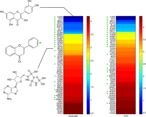 "Two heat map strips of dissimilarity scores using the original conformation of quercetin from 1H1I (right), and six generated conformations (left) against the PDB ligands. The strips enlists the top 50 similar ligands (corresponding colour legends shown), upper left shows the chemical structure of quercetin, the green dot marks hits with flavonoid scaffold. The colour legend represents the dissimilarity score (d) scale (see ""Methods"" section)."