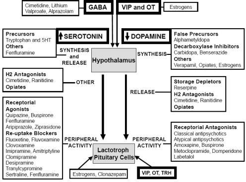 Schematic representation of mechanisms of drug-induced hyperprolactinemia.