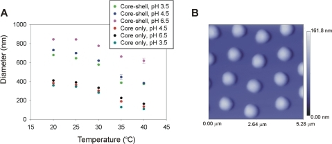 Light scattering and atomic force microscopy characterization of nanoparticles.(A) At room temperature, core is approximately 360 nm in size whereas adding core-shell particles have a diameter of 700 nm at pH 4.5. Core and core shell particles follow a typical temperature dependent behavior. (B) Particle suspension in MilliQ water (pH 5.5, 1 µg/mL) was deposited on freshly cleaved mica under humid atmosphere at room temperature for 15 minutes and dried under nitrogen. Atomic force microscopy (AFM) image of nanoparticles was acquired. Particles have a diameter of approximately 800 nm and exhibit a homogeneous size distribution. The scale bar for particle height shows a maximum height of 168 nm. The AFM picture was acquired under dry status therefore the particles are distorted (flattened) from their spherical shape due to drying on the mica surface.