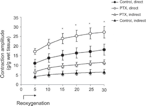 Effects of re-oxygenation in PTX-treated diaphragm muscles. Contractile recovery from hypoxia was investigated for 30 min in muscle strips in the presence of 95% O2 + 5% CO2 (control, n = 6 and PTX, n = 12, *P < 0.01); P < 0.01, two-way ANOVA, post hoc Bonferroni