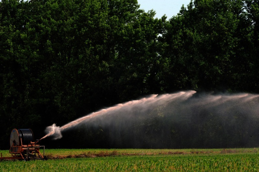 Hog waste being applied to sprayfields near Warsaw, North Carolina. Nutrients, pathogens, heavy metals, and other potentially toxic agents in the waste can make their way into local watersheds, with implications for drinking water and aquatic ecosystems.© 2013 Donn Young Photography