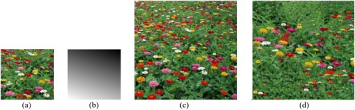 Perspective texture synthesis of a flower image.(a) the input example; (b) scale map with σ = 60°, τ = 20°; (c) our result; (d) optimization [Kwatra et al. 2005] result.