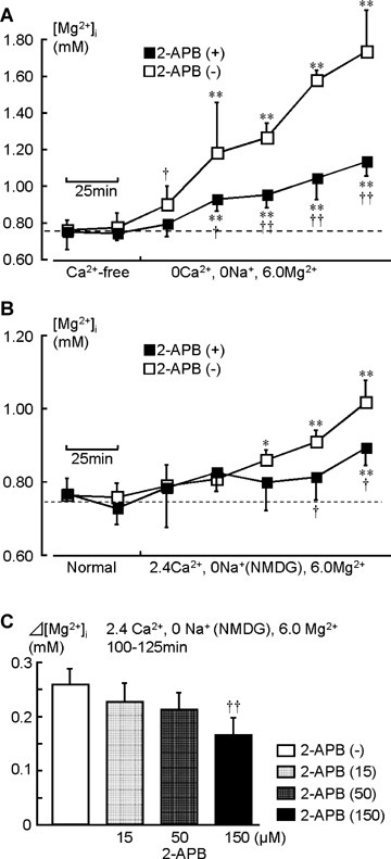 The inhibitory effect of 2-APB on [Mg2+]i rise in Mg2+-containing solutions. In (A), after acquiring the control data in a Ca2+-free solution, the extracellular Mg2+ was increased to 6.0 mM, Na+ was removed, and 150 μM 2-APB was added in the extracellular solution. The data indicated by open symbols (□) represent experiments without 2-APB (the same data shown in Fig. 4A, □). In (B), extracellular Na+ was substituted with NMDG. Crosses on filled symbols (□, ○) indicate statistically significant differences compared to the open symbols at the same time point (†, P<0.05;††, P<0.01). Bar graphs in (C) indicate effects of 15, 50 and 150 μM 2-APB during 125–150 min in the presence of Ca2+ (n= 4 for each experiment).