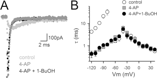 1-BuOH and 4-AP immobilize the same gating charge component.(A) Superposition of steady-state IGdeac recordings of Shaker-IR-W434F, elicited during a repolarizing step to -120 mV upon a 50 ms depolarization at 0 mV, in control condition (light gray), in presence of 1 mM 4-AP (dark gray), and in presence of 1 mM 4-AP plus 300 mM 1-BuOH (black). Note that the mixture of 4-AP plus 1-BuOH did not result in an extra acceleration of IGdeac decay or an extra reduction in gating charge movement. (B) Panel shows τIGac and τIGdeac in control condition (white circles, n = 6), in presence of 4-AP (dark gray squares, n = 5), and 4-AP plus 1-BuOH mixture (black circles, n = 6). Both drug conditions resulted in a similar acceleration of τIGdeac without affecting τIGac markedly.