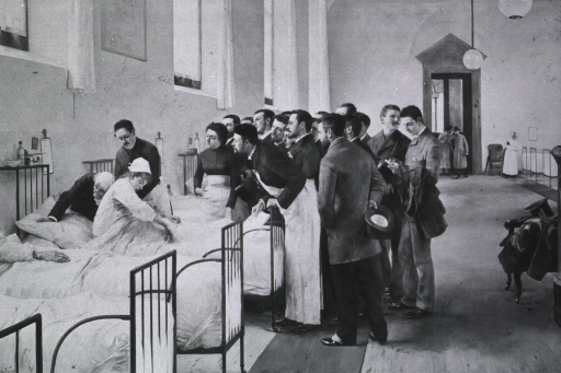 <p>Photograph of a painting by Luis Jimenez showing medical grand rounds in a German hospital.</p>