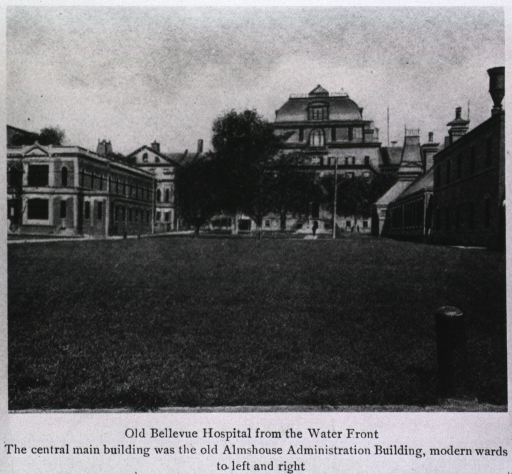 <p>Exterior view of the front facade, partially obstructed by trees, of the old administration building; on the right and left are 'modern' ward buildings.</p>