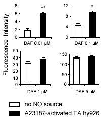 The difference in measured fluorescence intensity of DAF-2 alone or after reaction with NO released from endothelial cells becomes more significant with lower DAF-2 concentrations. Blank vials (white bars) or EA.hy 926 cells (black bars) were incubated with PBS supplemented with 100 µM of L-arginine for 5 min at 37°C in the dark. Then DAF-2 at the indicated concentrations and the calcium ionophore A23187 (1 µM) were added. 5 min later. The fluorescence of the supernatants was measured as described in Materials and Methods. All data are mean ± S.D. (n = 2 in triplicate). Differences between means were analyzed using Student's t-test. *P< 0.05; **P< 0.01.