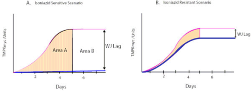 "Projected patterns of variation of TMKmyc curves in the drug sensitive and resistance scenario against a normal TMKmyc curve. This figure shows theorized patterns of variation for TMKmyc curves in the drug sensitive (A) and resistance (B) scenarios against a background normal TMKmyc curve. Note that, from this illustration, one could say that the extent of resistance (or number of mutant phenotypes) present in scenario B is the difference between the areas under both curves shaded light yellow. Note also that for any drug resistance profiling based on tmk assays, resistance may be viewed as inversely correlated to TMKmyc levels, while sensitivity is directly proportional to levels of TMK. The difference between TMKmyc levels of test versus standard TMKmyc curve is denoted by a window ""wj"" or wayengera-joloba lag, the numerical value of which is ""WJ"". Overall, drug sensitivity ~WJ and resistance ~1/WJ."