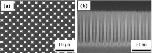 SEM images of the SiMW arrays fabricated by electrochemical etching. (a) Top view and (b) cross section view.