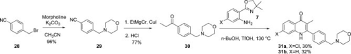 Synthesis of Morpholino Quinolones 31a and 31b