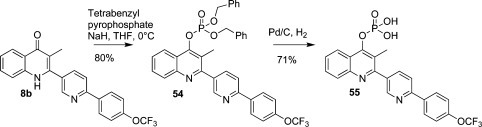 Synthesis of Phosphate Pro-Drug 55