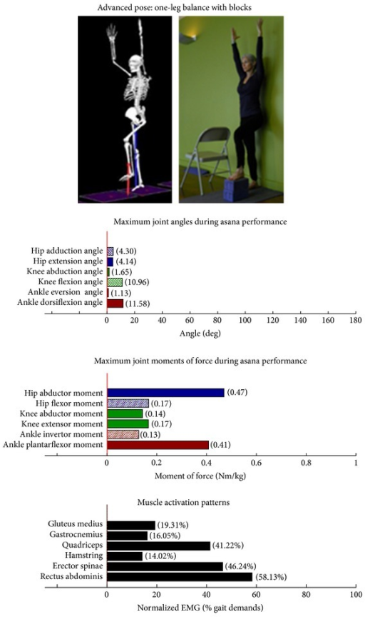 Asana physical demands. Biomechanical profiles: average maximum ankle, knee, and hip joint angles and joint moments of force (JMOFs) engendered during the middle 3 seconds of asana performance. Hashed bars represent hip adductor and flexor, knee adductor and flexor, and ankle invertor angles and JMOFs; whereas, the open bars represent hip abductor and extensor, knee abductor and extensor, and ankle evertor angles and JMFs. Muscle activation patterns represent the average peak EMG signals generated during the middle 3 seconds of asana performance. These signals were normalized to the peak EMG signals generated during each participant's walking trials at a self-selected pace.