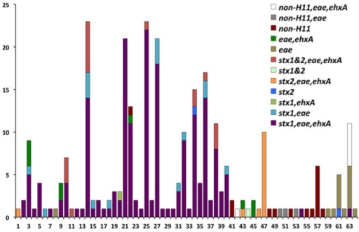 Virulence gene profiles within the 64 polymorphism-derived genotypes. Each bar or stacked bar represents the number of strains with the virulence gene profile per genotype.