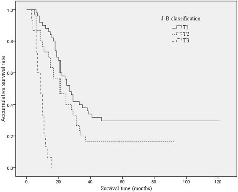 Overall Kaplan-Meier survival stratified by Jarnagin-Blumgart classification for HCCA. The median survival times were 27, 21, and 9 months for J-B T1, T2, and T3 stages, respectively.