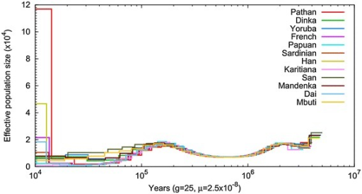 Inferred historical population sizes by Pairwise Sequential Markovian Coalescent analysis. PSMC (Pairwise Sequentially Markovian Coalescent) analysis was performed to reconstruct the demographic population history of Pathans, compared with a set of 11 HGDP genomes from around the world (Africa: Dinka, Yoruba, Mandenka, Mbuti, San; Asia: Dai, Han; Europe: French, Sardinian; Oceania: Papuan; Americas: Karitiana).