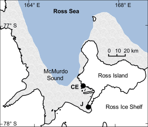 Map of pH sensor deployments in McMurdo Sound, Antarctica.Sensors were deployed at the Jetty (J) in 2011 and at Cape Evans (CE) in 2012. Annual sea ice contour (marble color) approximates November conditions for 2011 (RISCO RapidIce Viewer). Mapping data are courtesy of the Scientific Committee on Antarctic Research, Antarctic Digital Database. Map was constructed in QGIS (Version 2.0.1) and sea ice contour was added using GIMP (Version 2.6.11).