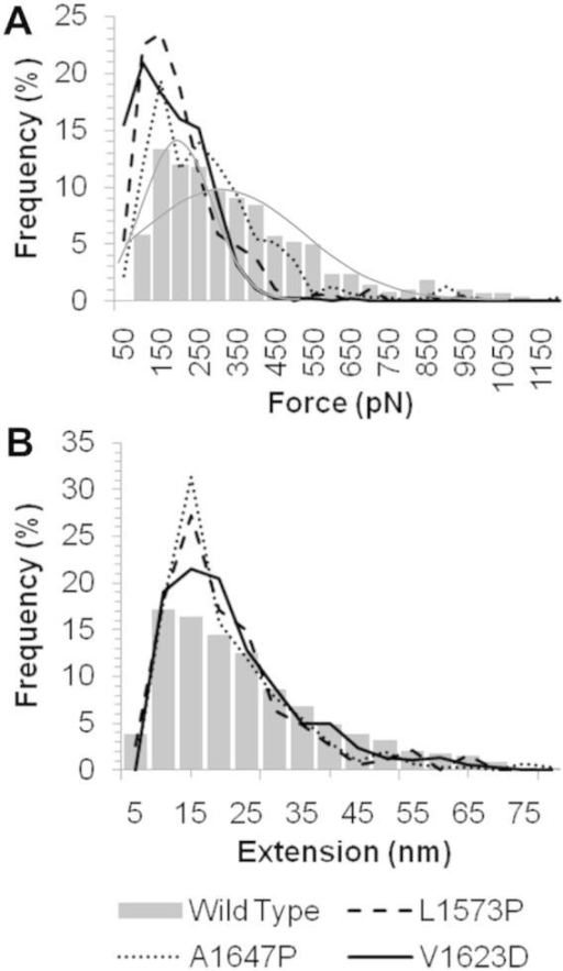 Comparison of the unfolding forces and extensions when wild type and variant hN2-NRR constructs are exposed to AFM unfolding. Frequency of force (A) and extension (B) events occurring during unfolding features in the wild type construct (bar graph) compared to A1647P, L1573P and V1623D (various lines, as shown in key) highlighting a major reduction in force with little change to the extensions observed. A bimodal distribution of the force frequencies for wild type is highlighted by grey lines.