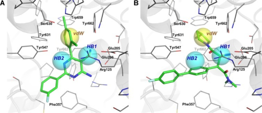 Three different binding modes of interaction of DPP4 inhibitors in the active site of the enzyme.Notes: The identified anchors HB1, HB2, and vdW from the SiMMap server are labeled and shown in cyan and yellow spheres, respectively. Docking poses of two selected inhibitors are visualized herein: the compound with the best SiMMap score (A) and the compound with the lowest half maximal inhibitory concentration values (B). Residues at the active site are shown in green sticks while key interacting residues are labeled and shown in dark grey lines.