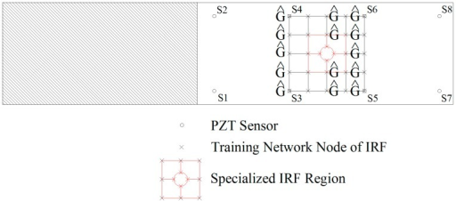 Demonstration for the formation of IRF network on Specimen 2.