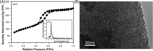 (A) N2 adsorption–desorption isotherms and the corresponding pore size distribution of MBG; (B) TEM image of MBG.