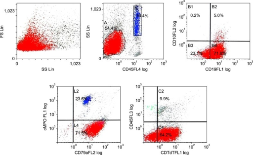 The blasts population showed expression of CD19, TdT, and CD79a, consistent with B-cell acute lymphoblastic leukemia.