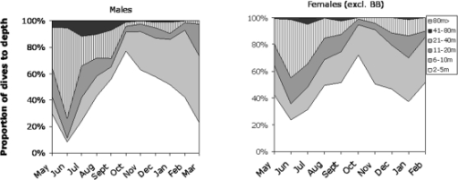 Proportions of dives to depth intervals from 2–5 m to more than 80 m of adult ringed seals.Females tagged in the Bothnian Bay (BB) not included. More than 90% of male dives were deeper than 5 m in June, which changed to 25% in October to again increase to about 80% in March. A similar flux was evident in females, but the dives were generally shallower than for males.