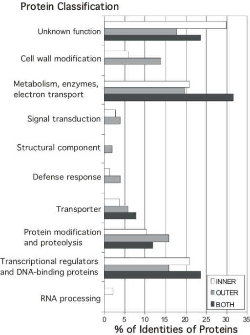 Classification of identified genes by protein type and function. Proteins were classified into categories using GO annotations and published information and the percentages of each category encoded by the genes in each integument group are shown. 'Unknown biological function' includes those proteins with no recognized domains, as well as proteins with recognized, conserved domains of unknown function. The category 'transcriptional regulators and DNA binding proteins' includes recognized transcription factor families and chromatin binding proteins, that may or may not be involved in regulation.