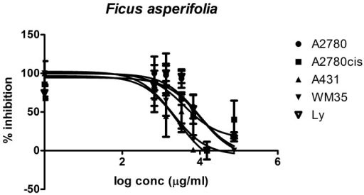 Cytotoxic effect of Ficus asperifolia.The cytotoxic effect was evaluated in four tumoral cells and is compared with their effect on normal human lymphocytes. Cells were treated in triplicate with eight different concentrations from the extract diluted in cell-friendly, non-toxic buffer, and the inhibitory effect against the treated cells proliferation was appraised after 24 hours.