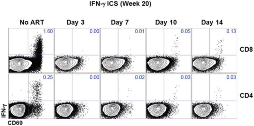 Intracellular cytokine staining raw data of Gag-specific CD8+ and CD4+ T cells.Representative data for the magnitude of Gag-specific IFN-γ+ CD8+ and CD4+ T cell responses at week 20 in monkeys that initiated ART on days 3, 7, 10, and 14 of infection or with no ART.