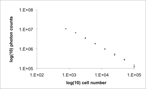 Quantitative relationship between cell concentration and bioluminescence signal in vitro. The plot shows a linear relationship between cell count in vitro and bioluminescence signal. Vertical bars represent standard deviation.