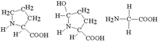 Chemical structures of the collagen main constituents: proline, hydroxyproline and glycine.