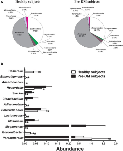 Comparison of gut microbiota composition between healthy (n = 16) and Pre-DM (n = 13) subjects. (A) Pie charts depict mean abundance (% of total) of the indicated phyla. (B) Bar graph of genera shows significant differences in abundance between healthy and Pre-DM subjects. Values are presented as mean ± standard error (SE) *P ≤ 0.05.