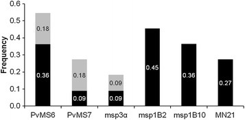 Detection of alleles in artificial mixtures of plasmid DNA by applying different criteria for rare allele identification. The frequency of detection of multiple alleles was calculated considering all 11 of the artificial mixtures assayed for each marker. The bars represent the total proportion of infections identified by each marker. Two criteria for minor allele detection were considered: a cut-off value of one-third (colored in black only) or one-fourth (the entire bar, including both black and greybars), of the height of the predominant peak. The increase in the rate of detection of alleles with one-fourth criterion is highlighted in grey