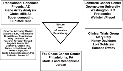 Organization of Department of Defense Center of Excellence Grant. Shown is the organization of our Department of Defense Center of Excellence Grant entitled 'A new therapeutic paradigm for breast cancer exploiting low-dose oestrogen-induced apoptosis'. The model systems to study the survival and apoptosis induced with oestrogen are being used in time course experiments at the Fox Chase Cancer Center. The materials are distributed to Translational Genomics for genomic analysis using comparative genomic hybridization, small interfering (si)RNA analysis or Agilent gene array analysis, and the Vincent T Lombardi Cancer Center is involved in conducting proteomics analysis. All results are uploaded into a shared secure web for data processing and target identification by our informatics and biostatistical group. Each laboratory is able to validate emerging pathways and study individual genes of interest. Our programme is integrated with a clinical trials programme that provides patient samples for validation of apoptotic or survival pathways. We are grateful to our external advisory board of patient advocates and professional colleagues for their continuing advice and support.