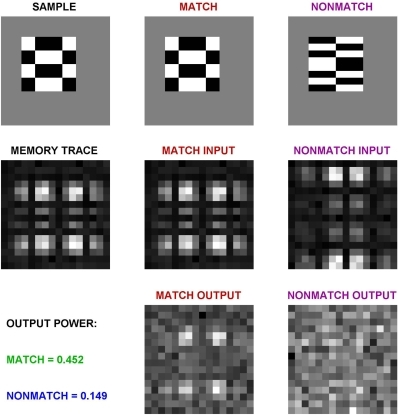 Example of matched filter output computation.The top row shows input images. The memory trace of the model is simulated with the discrete Fourier Transform of the input, plus noise (middle row). (Noise is not very noticeable, because of the logarithmic scaling). Bottom row shows the product of the memory trace and the match and nonmatch inputs. The output power is shown on the left.
