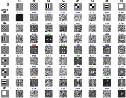 Performance of the matched filter across full set of stimulus pairs by the stochastic model simulation.The left column shows the 8 stimuli presented to the model as the sample, and the top row shows the 8 stimuli presented as a match or nonmatch. The intersection of each row and column is a 16×16 pixel image made up of the responses of the 256 model TE neurons. The diagonal (with slope -1) shows the matched filter outputs for the eight sample-match pairs. The off diagonals show the matched filter outputs for the 56 sample-nonmatch pairs. The total power (normalized to 1.0 for the peak of the 64 pair set, in this example, S7-S7 sample-match) is shown above each output. With the threshold set to 0.225, the model made the fewest mistakes (false alarms, red values). The green values show correct matches, and the blue responses show the correct nonmatches. With the noise in the model adjusted to match that in the monkeys, the model got 62/64 = 97% of the trials correct. The average performance across the two monkeys was 98%.