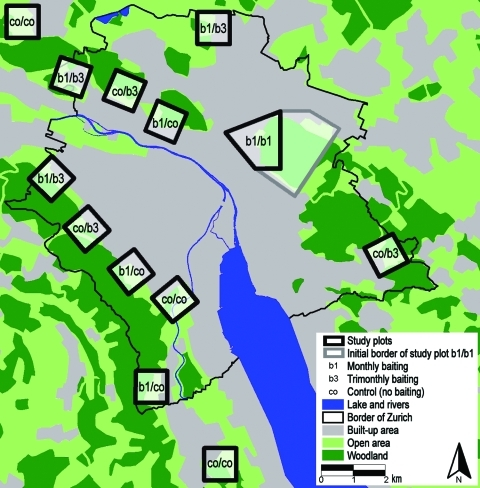Study area of the anthelminthic baiting experiments in the conurbation of Zurich, Switzerland. Thirteen study plots were defined along the urban periphery during the 2-phased baiting period (phase 1, April 2000–October 2001; phase 2, November 2001–December 2003). Five different treatment schemes were used in these plots: co/co = no bait delivery during the whole study (n = 3 sites of 1 km2 ); b1/b3 = bait delivered monthly during the first phase and trimonthly during the second phase (n = 3); co/b3, no bait delivery during the first and trimonthly delivery during the second phase (n = 3); b1/co, monthly bait delivery during the first and no delivery during the second phase (n = 3); b1/b1, monthly bait delivery during the first and the second phase in a single study plot. This largest study plot comprised initially an area of 6 km2 (gray line) and finally an area of 2 km2 during the second baiting phase.