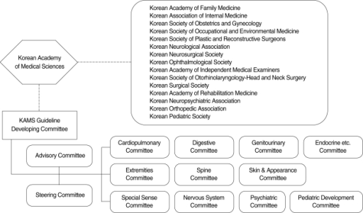 Organization of the KAMS Guideline developing committee.