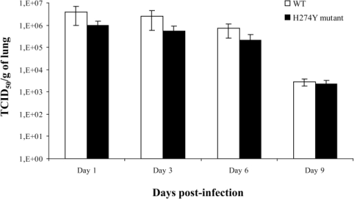 Lung viral titers of mice infected with wild-type (WT) or H274Y mutant isolates of pH1N1.Mice were infected intranasally with 5×105 PFUs of either WT pH1N1 (A/Québec/147023/2009) or oseltamivir-resistant H274Y mutant (A/Québec/147365/2009) isolate. Three to four mice per group were sacrificed on days 1, 3, 6 and 9 for determination of lung viral titers, which were reported as TCID50 per gram of lung.