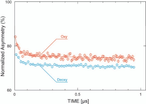 Muon spin relaxation time spectrum in hemoglobin aqueous solution at room temperature in an earlier time range observed with continuous muon beam at TRIUMF. The data is presented in terms of muon polarization as shown in the text.