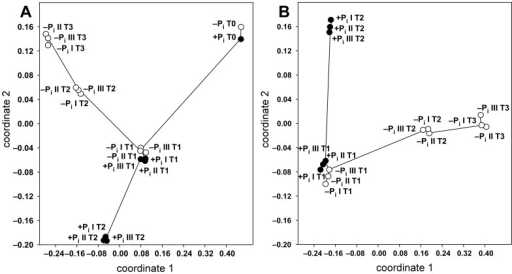 Similarity among the FT-ICR-MS samples analyzed in ESI-negative mode during bacterial growth under +Pi and −Pi conditions.Non metrical multidimensional scaling (NMDS) was performed by employing the Bray-Curtis similarity index and using the data of the unfiltered (A) and filtered (B) datasets. All biological triplicates of +Pi (filled circles) and −Pi (empty circles) conditions are shown. Nearest neighbor samples (i.e. most similar) are connected to visualize pairwise sample similarities. The stress value for both plots is 0.06.