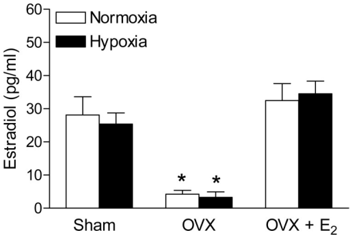 Effect of antenatal hypoxia on plasma estrogen level in female offspring.Blood plasma was collected from the both control and hypoxia-treated female offspring of sham, OVX and estrogen replacement groups. Plasma estrogen levels were determined with a commercially available Estradiol ELISA kit. Data are means ± SEM, n = 10–14 each group. * P<0.05, OVX vs. sham group.