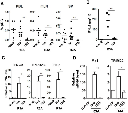 Pre-infection depletion of pDC abolishes IFN-I induction during acute HIV-1 infection in humanized mice.(A) Summarized data of pDC percentages in total human leukocytes (CD45+) from humanized mice are shown mice. Mice were treated with either 15B or isotype control (iso) antibody. After pDC depletion, mice were infected with HIV-R3A and terminated on 8 days post infection (dpi) for analysis. Mock infected mice, n = 6; isotype+R3A infected mice, n = 9; 15B+R3A infected mice, n = 12. (B) Plasma levels of IFN-α2 from mock, HIV-1 infected and 15B or isotype mAb treated mice were quantified by Luminex assays. Mock, n = 3; isotype+R3A, n = 5; 15B+R3A, n = 5. (C) The mRNA expression of major type I IFN genes in purified human cells (CD45+) from mouse spleens was measured by real-time PCR. (D) ISGs (Mx1 and TRIM22) expression in purified human cells (CD45+) from mouse spleens was measured by real-time PCR. Mock, n = 3; isotype+R3A, n = 5; 15B+R3A, n = 5. Mice were analyzed at 8 days post infection. Error bars in graphs indicate median value. Error bars indicate standard deviations (SD). * and ** indicate p<0.05 and p<0.01, respectively.