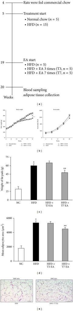 Effects of electroacupuncture on body weight, fat accumulation, and adipocyte hypertrophy in high fat diet rats. Animals with high fat diet-induced obesity were treated with EA once by daily for three times (T3) or seven times (T7) in the age of 20 weeks. Pair-feeding was conducted in three separate groups of obese rats to achieve the same body weight during this period; n = 5 rat/group. Flow chart of the study design (a), detailed view of the growth curve during the experimental period, body weight (b, left panel), and food intake was measured on a per-cage basis throughout the study and represents cumulative energy intake (b, right panel) and total adipocyte size expressed at the end of treatment (c). H&E staining showing a decrease in adipocyte size in EA treatment rats, compared with obese animals fed a HFD (e). Distribution of adipocyte sizes indicates a shift in the size of the adipocyte population toward larger hypertrophied cells, reflected in a significant increase in the mean adipocyte size in HFD animals. *P < 0.05, compared with normal chow group; **P < 0.05, compared with HFD animals. NC: normal chow. HFD: high fat diet. EA: electroacupuncture. T3: three times of EA treatment. T7: seven times of EA treatment. Original magnification ×40. Scale bars, 100 μm.