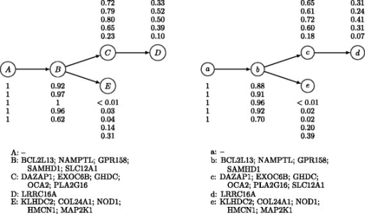 Expert-generated and inferred phylogenies for patient CLL077 with chronic lymphocytic leukemia. Left: The expert-generated phylogeny based on targeted deep-sequencing data. Right: The phylogeny inferred by PhyloWGS on allele frequencies of the same SSMs found using WGS. The subclonal lineage population frequencies for the five samples and the SSM assignments of lineages are also shown in the figure. SSM, simple somatic mutation; WGS, whole-genome sequencing.