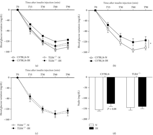 TLR4 signaling is involved in IH-induced insulin resistance. Glucose variation during the 90 minutes of the intraperitoneal insulin tolerance test (IpITT) in C57BL/6 or TLR4−/− mice exposed to 1 week of intermittent hypoxia (IH) or normoxia (N) (a). IpITT presented separately for C57BL/6 (b) and TLR4−/− mice (c). For each group, lowest blood glucose level (nadir) during the 90 minutes of the IpITT (d). *P < 0.05 IH/C57BL/6 versus N/C57BL/6, n = 13–15 per group.