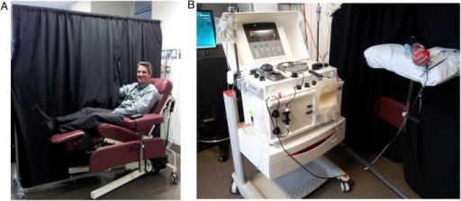 A black opaque curtain prevents the participant from seeing the apheresis machine and therefore the individual cannot see if red blood cells or plasma is removed. (A) View from the patient's perspective, (B) View from the apheresis machine side of the curtain.