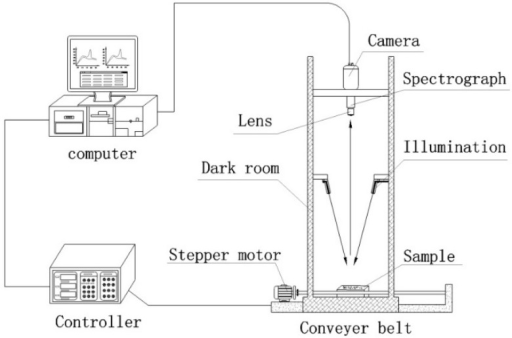 The schematic diagram of the hyperspectral imaging system.